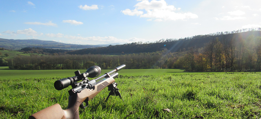 Air Rifle Training for the Field