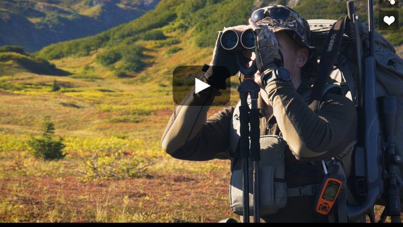 Moose Calling in Alaska