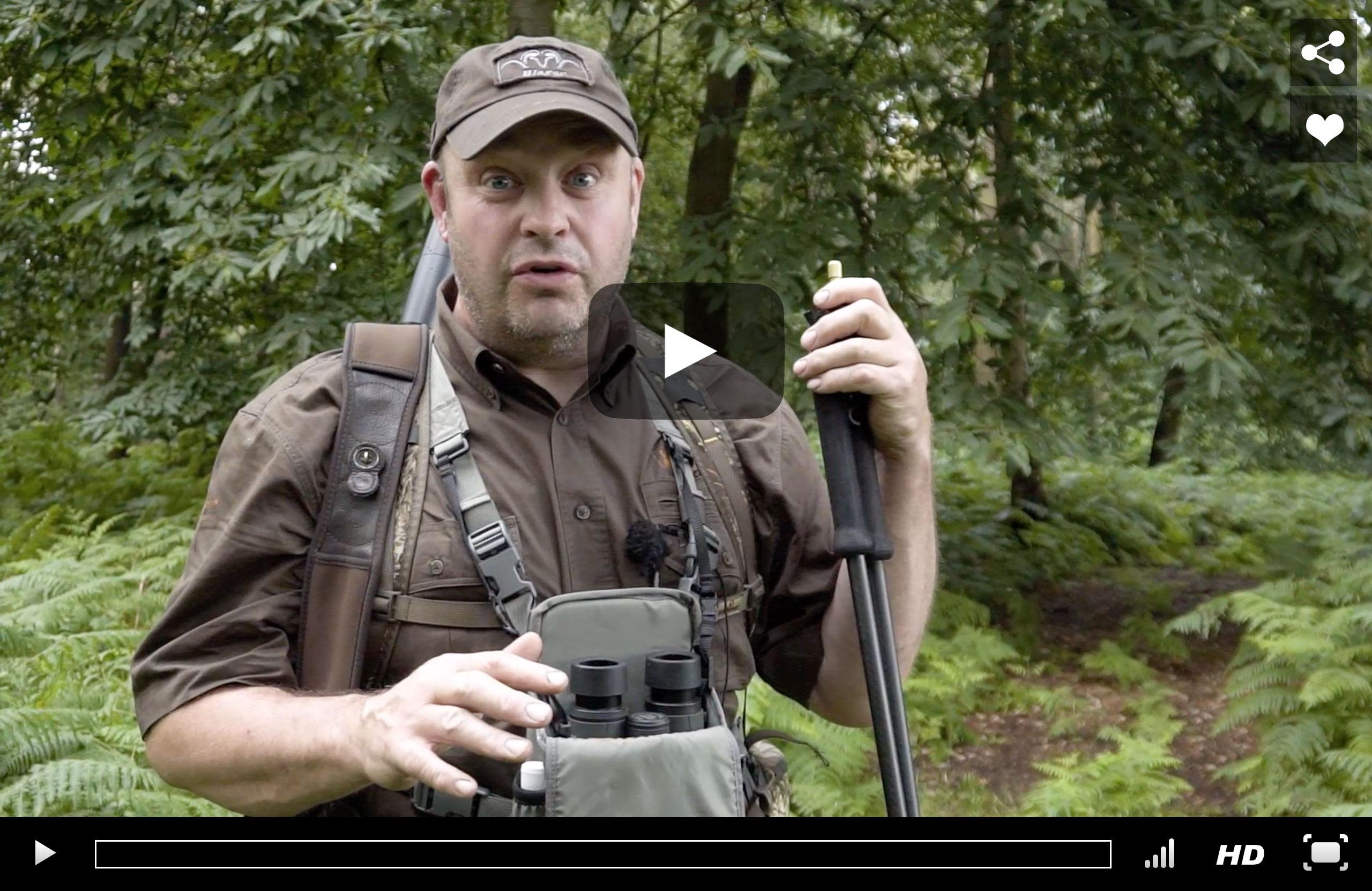 Fallow Buck Stalking Video