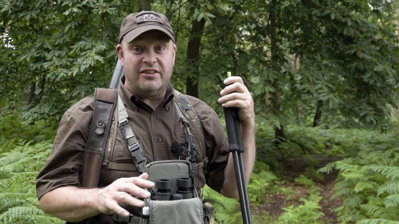 Fallow Buck Stalking