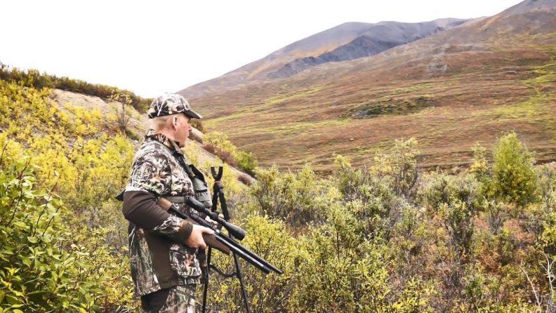 Hunting Ptarmigan