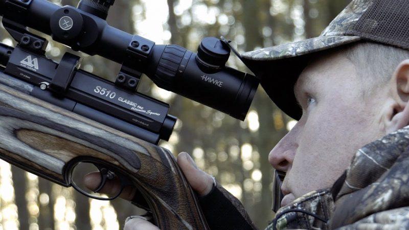 Squirrel Airgun Hunt